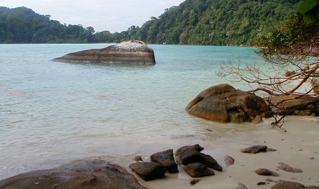 Similan-Surin islands to reopen for visitors from Monday