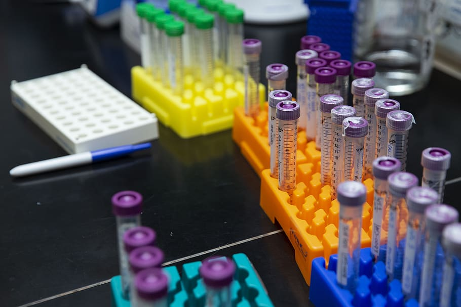 Coloured test tubes in a laboratory