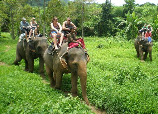 Elephant trek in Koh Chang