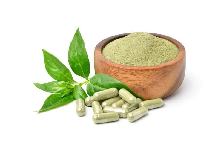 Encapsulated green chiretta powder