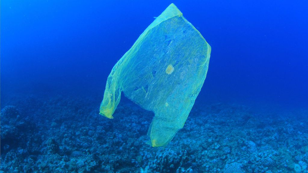 Plastic bag in the sea