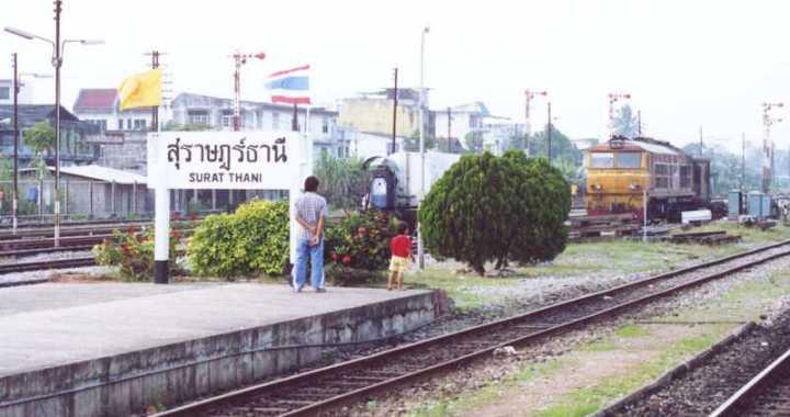 Train crushes pickup, killing woman, son in Surat Thani
