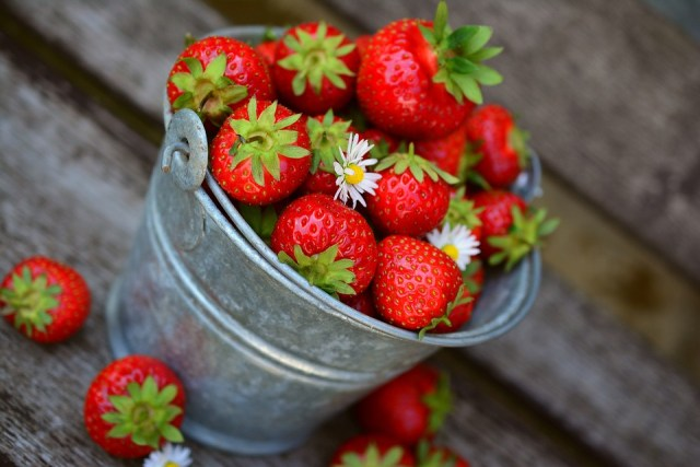 Nation-Wide Scare as Metal Needles Are Found in Strawberries All Over Australia