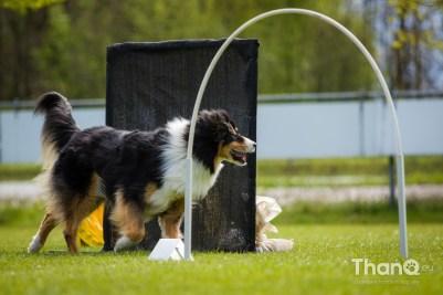 Landelijke Hooperwedstrijd KwiSPEL Made op 23 april 2017