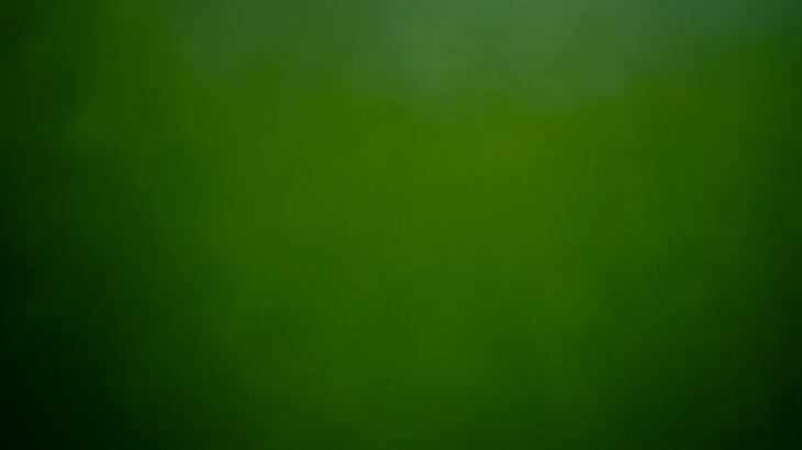 اللون الأخضر في المنام ومعناه