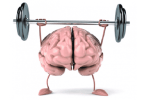 موضوع تعبير عن العقل السليم في الجسم السليم بالعناصر