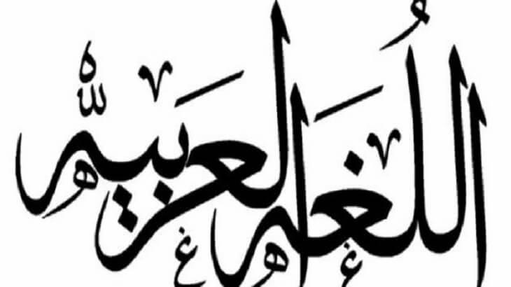 موضوع تعبير عن اللغة العربية هويتنا بالعناصر معلومة ثقافية