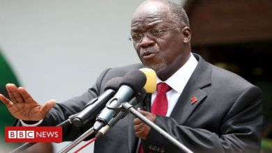 How Tanzania President John Magufuli Died, Goat and Pawpaw test positive for Coronavirus