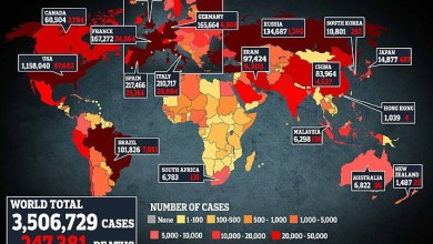 Confirmed Coronavirus cases worldwide