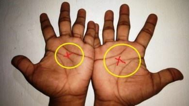 if You Have 3 Lines On Your Palm Instead Of 4, Here Is What It Means
