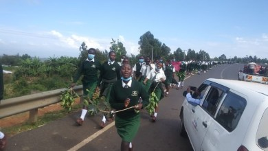 Female high school students in Kenya stage protest after some students were allegedly defiled by teachers and the principal tried to cover it up (video)