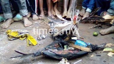 Witchcraft 'Plane' Crash Landed in Chiradzulu District