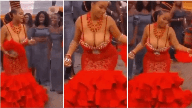 Bride leave guests speechless ; flaunts her huge melons in 'free show' dress [video]