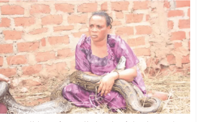 Drama as an elderly woman forces granddaughter to breastfeed a snake