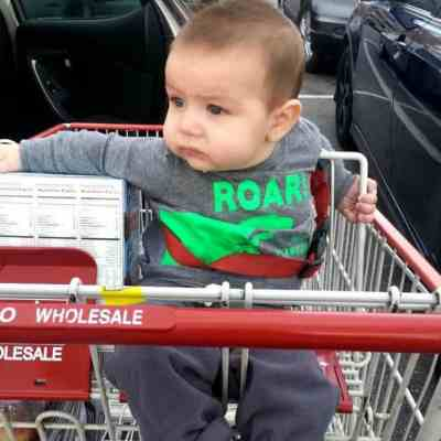 Favorite Costco Buys for Small Families