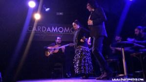 Flamenco em Madrid show