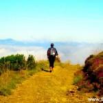 Guia prático do Caminho de Santiago