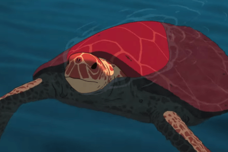 The Meaning Of The Red Turtle Nature S Beautiful Chaos That Moment In