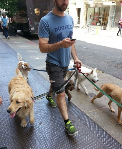 Walking five dogs and texting