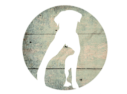 PawPack subscription box for dogs and cats logo