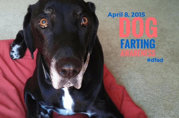 Dog Farting Awareness Day