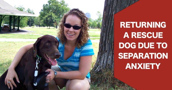 returning a rescue dog