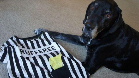 Dog Rufferee Costume