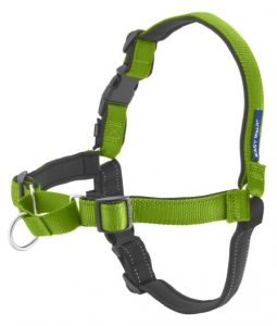 Easy Walk no-pull harness