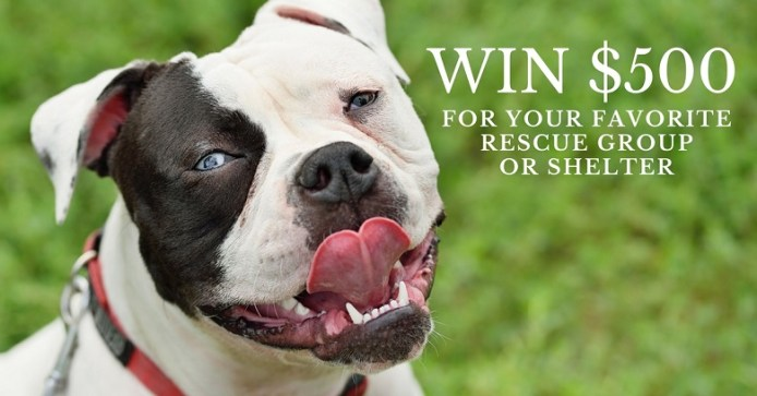 Win $500 for your favorite shelter
