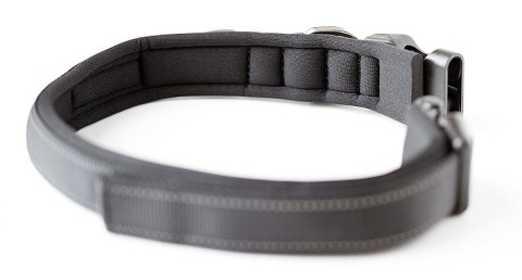 Mighty Paw padded sport collar review