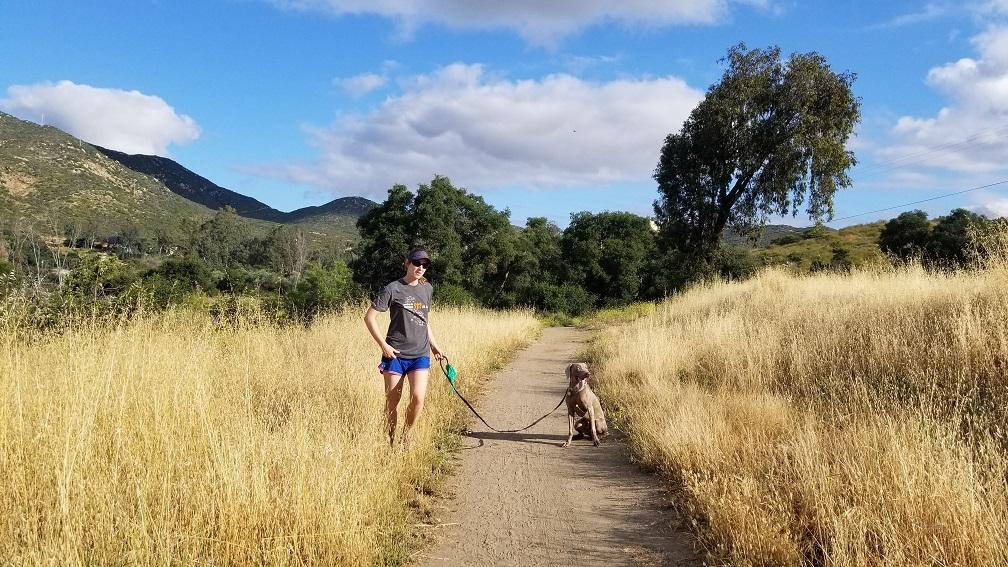 Ultra marathon training with dogs