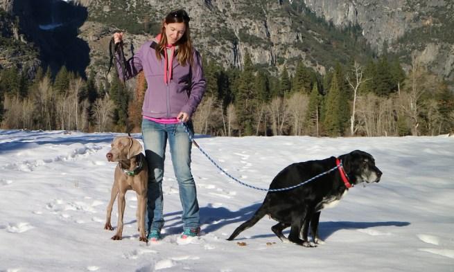 Ace defiles Yosemite National Park