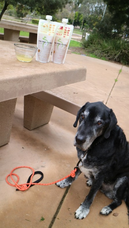 Primalvore bone broth for dogs review