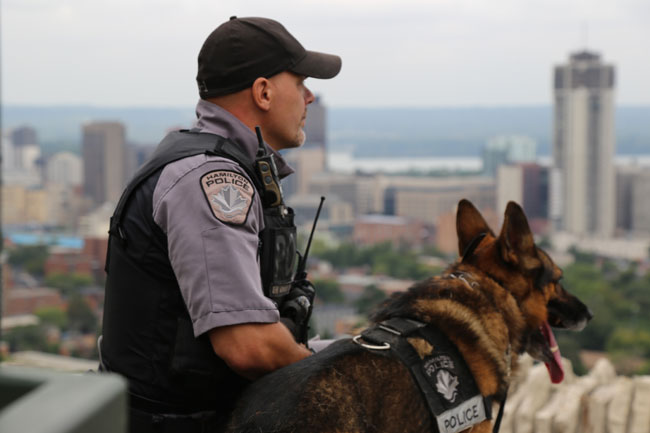 Police officer with a German Shepherd police service dog