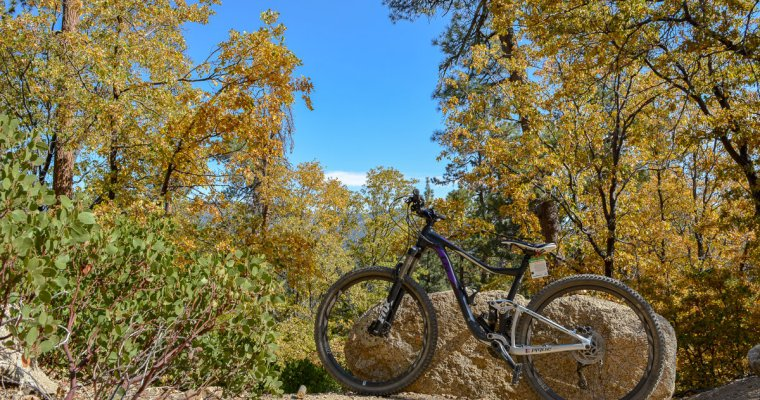 9 Mountain Biking Essentials to Pack for Every Ride