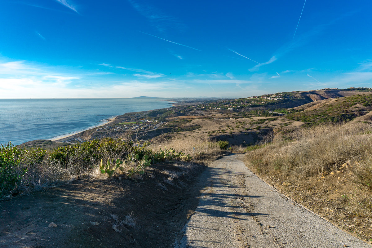 Overlooking Laguna Beach in Crystal Cove State Park