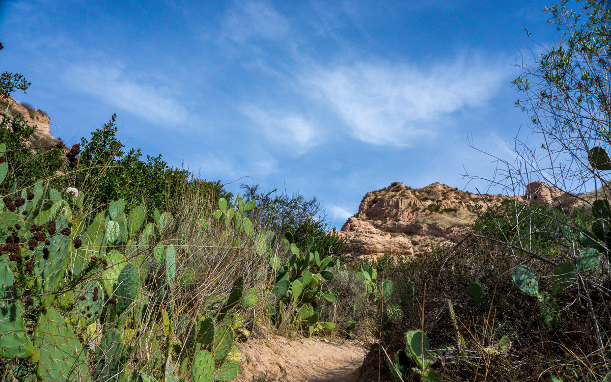 Red Rock Canyon Trail in Whiting Ranch Wilderness Park
