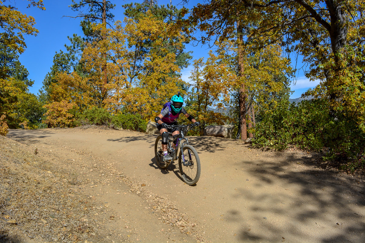 Downhill mountain biking in Big Bear, California