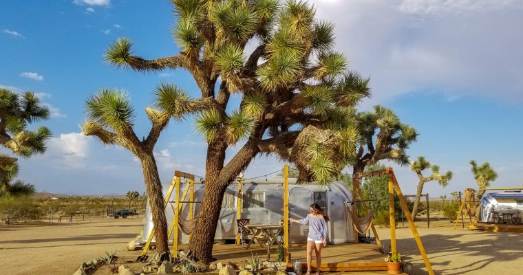 Staying at Joshua Tree Acres