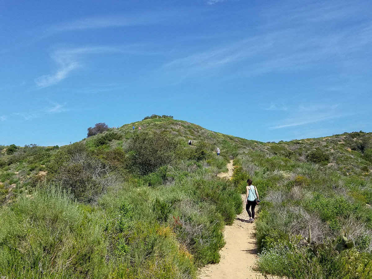 Hiking trail in Laguna Coast Wilderness Park
