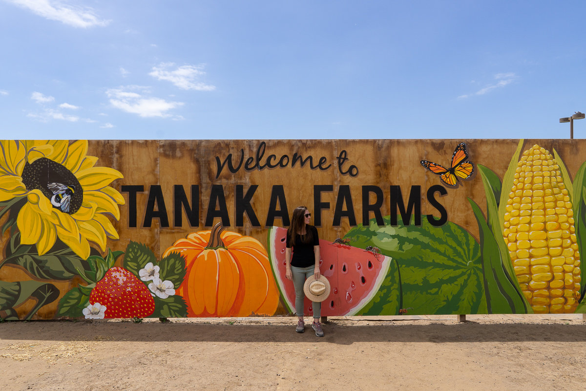 Tanaka Farms in Irvine, California