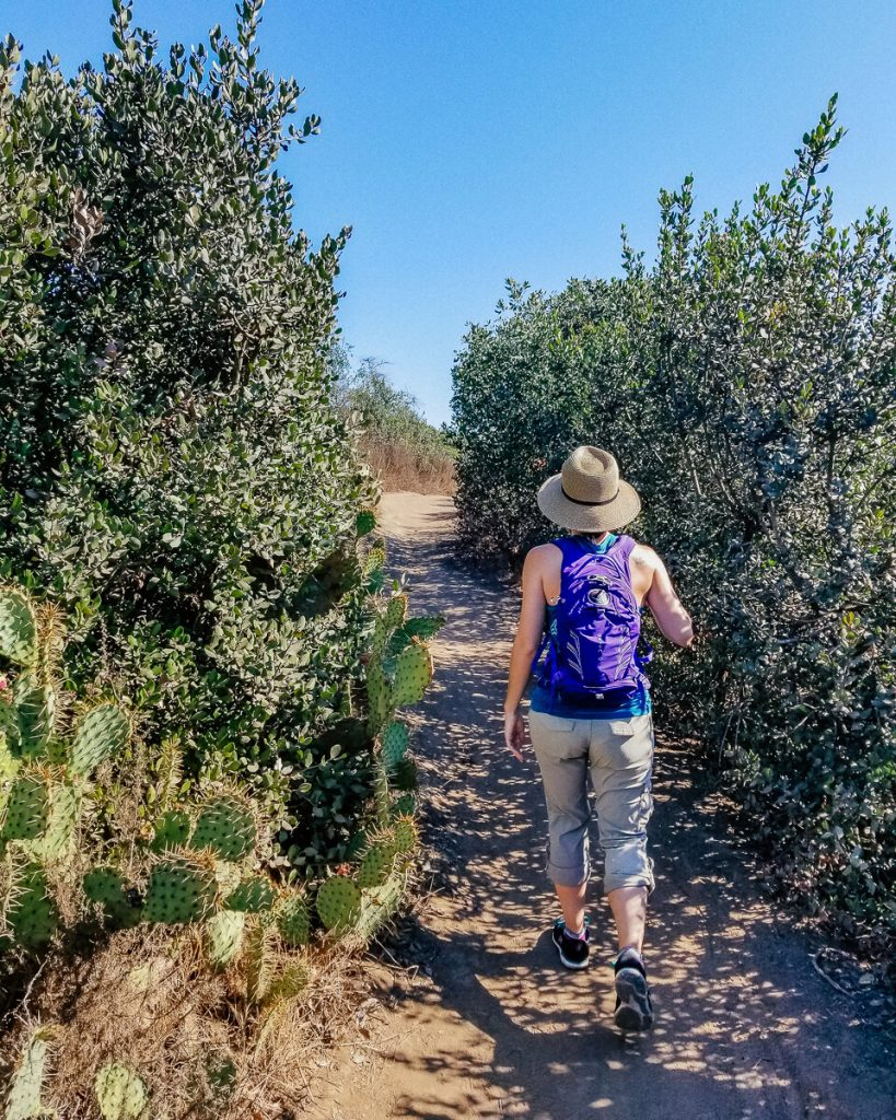 Hiking trail in Aliso & Wood Canyons Wilderness Park