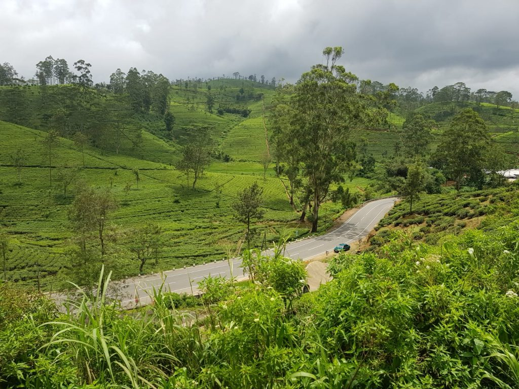 The Hill Country, Sri Lanka