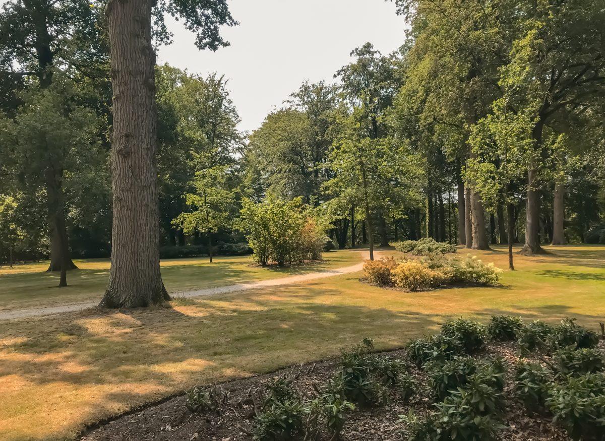 Landgoed Staverden, de Veluwe 2020 5