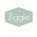 ziggle-2.png