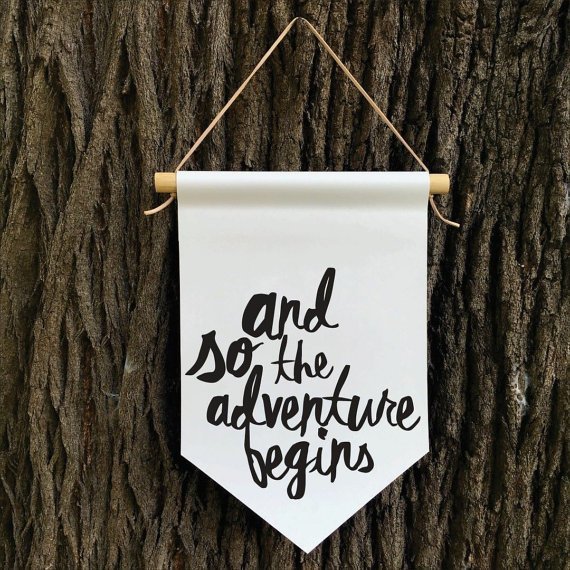 ArrayOfWhimsy_and so the adventure begins_banner_flag_etsy