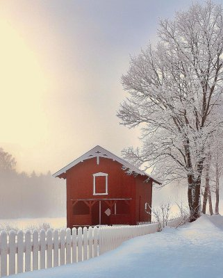 scandinavian feeling outdoors winter