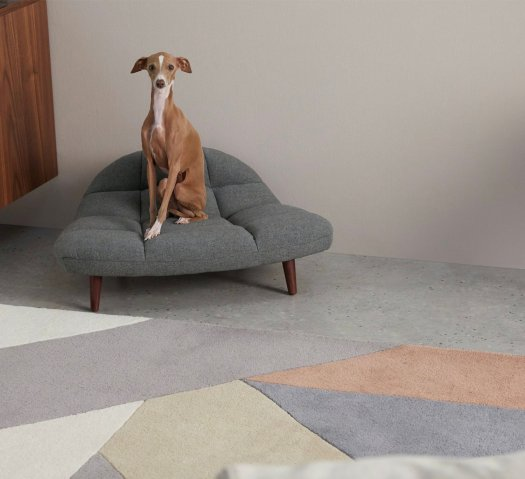 Kolton Pet Sofa