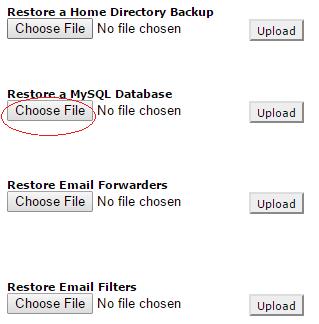 Click on Choose File under Restore a MySQL Database