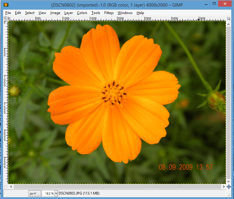 Open image fto remove date and time stamp